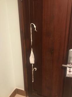 TP Door Repair